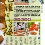 梅香莊-壹周刊P1